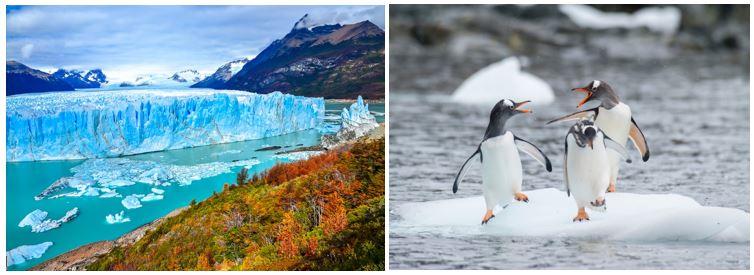 arjantin antartika